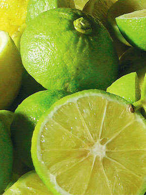 Calabrian Bergamot: the Scent of Tradition