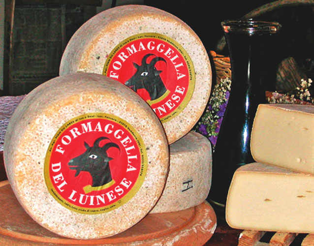Varese. Formaggella del Luinese cheese.