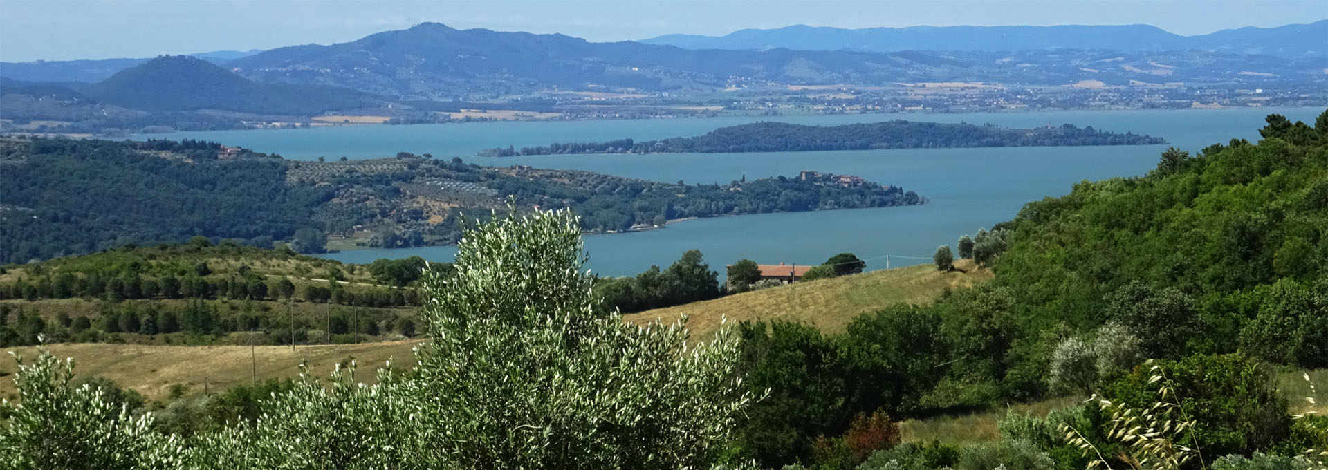 The Umbria PDO: Colli del Trasimeno and Colli Orvietani